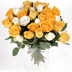Bunch of 24 yellow & white Roses