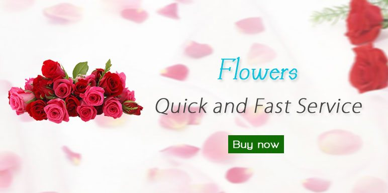 send roses to mumbai, flower delivery in mumbai